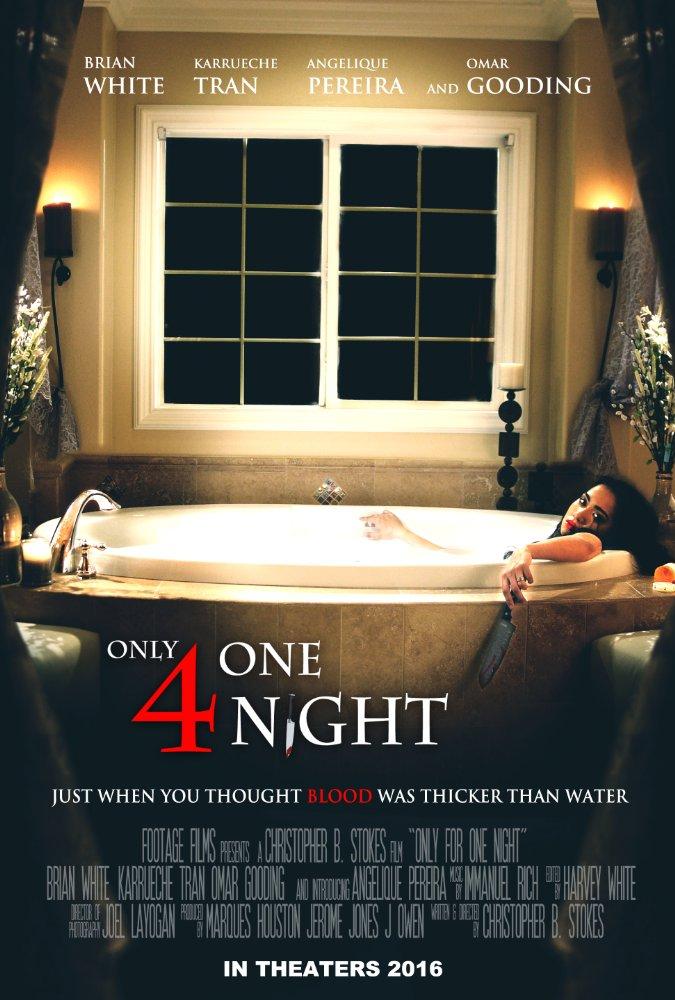 Только на одну ночь / Only for One Night (2016) WEB-DLRip