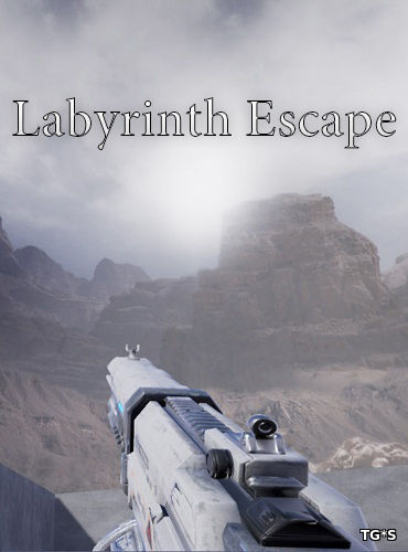Labyrinth Escape [ENG] (2017) PC | Лицензия