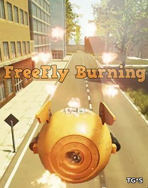 FreeFly Burning (2017) PC | RePack by qoob