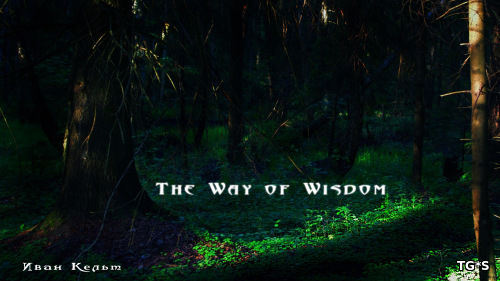 Путь мудрости / The Way of Wisdom (2016) PC | Лицензия