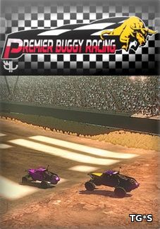 Premier Buggy Racing Tour [ENG] (2017) PC | Лицензия